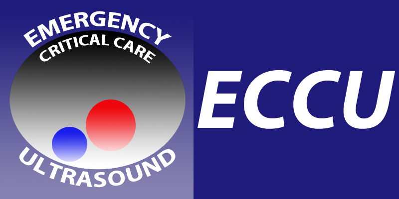 SJRH ECCU PoCUS Courses | Department of Emergency Medicine | Saint